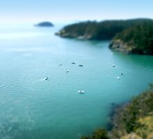 Mini Boats 1 - Tilt Shift by Scott Heffernan