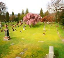 Mini Cemetery 4 - Beetlejuice - Tilt Shift by Scott Heffernan