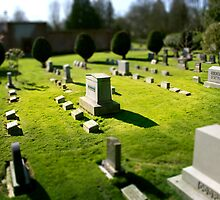 Mini Cemetery 1 - Beetlejuice - Tilt Shift by Scott Heffernan