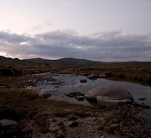 kosciuszko - Snowy River Dusk by Timothy Kenyon