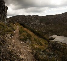 Kosciuszko - Path To The Summit View 01 by Timothy Kenyon