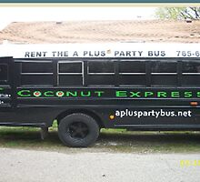 Luxury Party Bus Services in Central Indiana by apluspartybus
