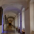 Stift (Abbey) of Melk - Austria by Arie Koene