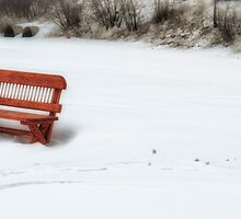 Reserved For Winter by Richard Bean