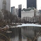 Plaza Hotel and Reflection, Central Park South, Central Park, New York City by lenspiro