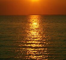 Sunset Sparkles by Gilda Axelrod