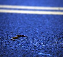 Worm Crossing by WeridofWerid