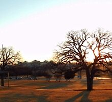 PANORAMA VIEW OF MCKENNA PARK by Sandra  Aguirre