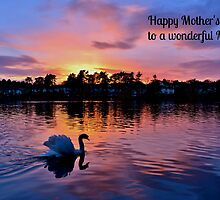 Swan at Sunset Mother's Day Card - Wonderful Mom by Paula J James