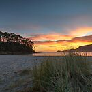 Quiet Corner beach at sunrise - Adventure Bay, Bruny Island, Tasmania, Australia by PC1134