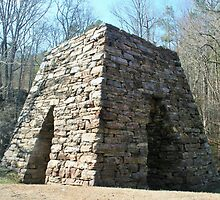 Cooper's Furnace in Cartersville GA by gt6673