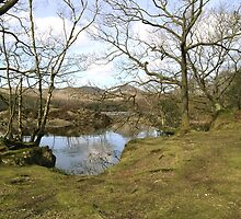 The Shore of Coniston Water by velo