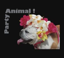 Party Animal!  Bulldog with Flower Bonnet by KTMorgan