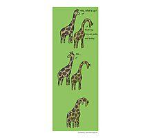 Consolation: Giraffes Photographic Print