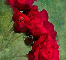 Red Rose Cascade by Diane Schuster