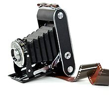 Bellows Camera by Maria Dryfhout