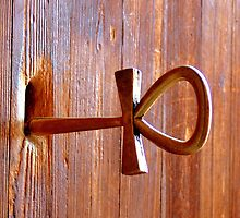 Ankh - the key of life  by dellal