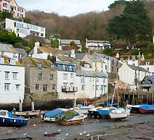 Polperro village, Cornwall by photoeverywhere