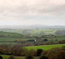 Cornish countryside on a misty day by photoeverywhere