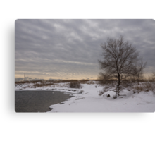 Pearly Grays and Ripples on the Winter Beach Canvas Print