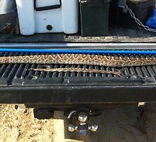 Snake Stick Catcher by snakecatchersti