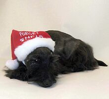 Snoozing Santa Scottie by smithmansell