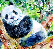 SWEET DREAMS PANDA! by lautir