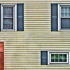 Windows by Joy  Rector