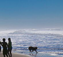 Fun on the Pacific Shore by David Denny