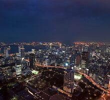 tokyo odiaba at night by photoeverywhere