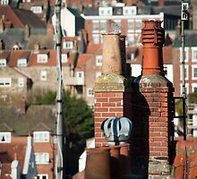Rooftop view of chimney pots by photoeverywhere