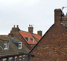 Whitby cottage roofs by photoeverywhere