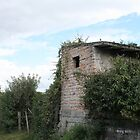 Brick Shed in Cotacachi by rhamm
