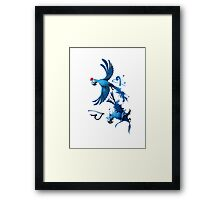 Rio Love Birds Framed Print