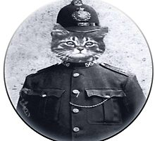 Police Cat Round by Rob Cox