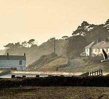 Lepe Beach,Hampshire by SueKnight