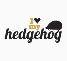 I love my hedgehog by blackestdress