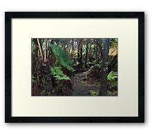 hawaiian rainforest Framed Print