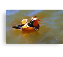 Mandarin Duck Flapping In The Water Canvas Print