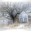 The Ghosts of Winter by wiscbackroadz