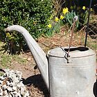 Old Tin Watering Can by WeeZie
