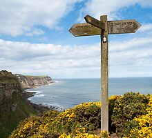 Cleveland Way signpost by photoeverywhere
