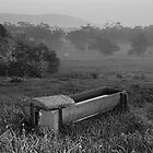 Water Trough by Alex Fricke