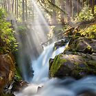 Sol Duc Falls by Michael Breitung