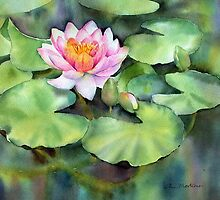Waterlily by Ann Mortimer