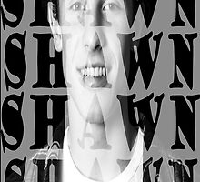 Shawn Mendes by smentcreations