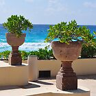 Potted Plants get Exotic by AthomSfere