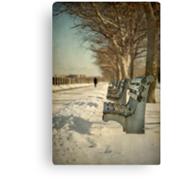 Days Of Cold Chills Canvas Print