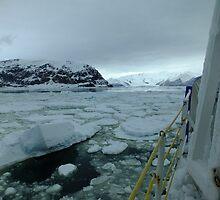 Pack Ice - Cape Hallett by Karen Stackpole