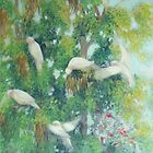 Breakfast with Galahs by maria paterson